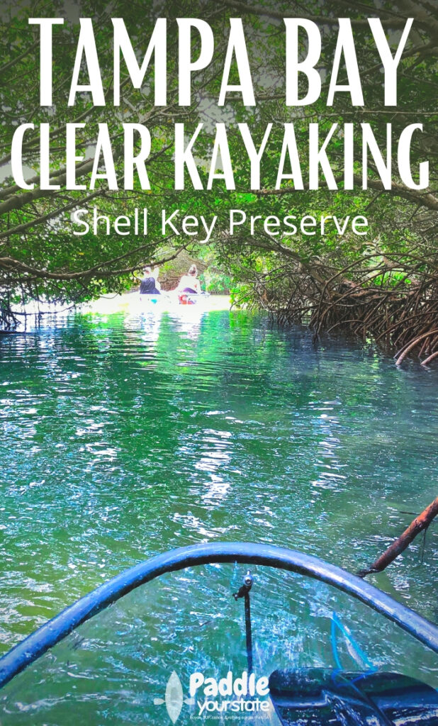 Clear Kayaking to Shell Key Preserve from Tampa Bay, Florida is a spectacular, beautiful experience. Wildlife watching and paddling are perfect. READ FULL REVIEW